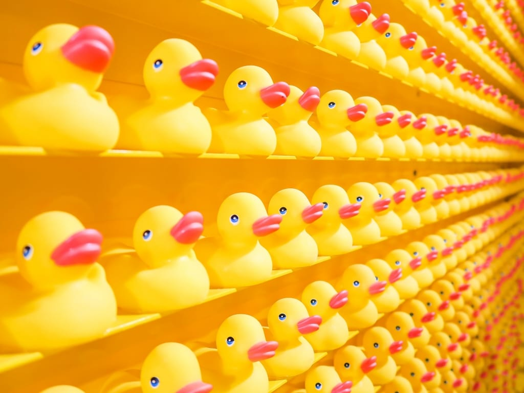 le Retail Hybride : le pari de l'instagrammable ?
